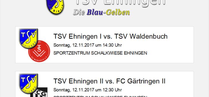 Heimspiele gegen Waldenbuch, Gärtringen und Zagreb Sindelfingen am Sonntag, 12. November 2017