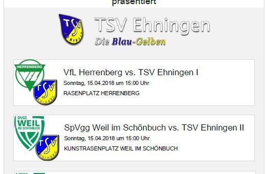 Auswärtsspiele in Herrenberg und Weil im Schönbuch am Sonntag, 15. April 2018