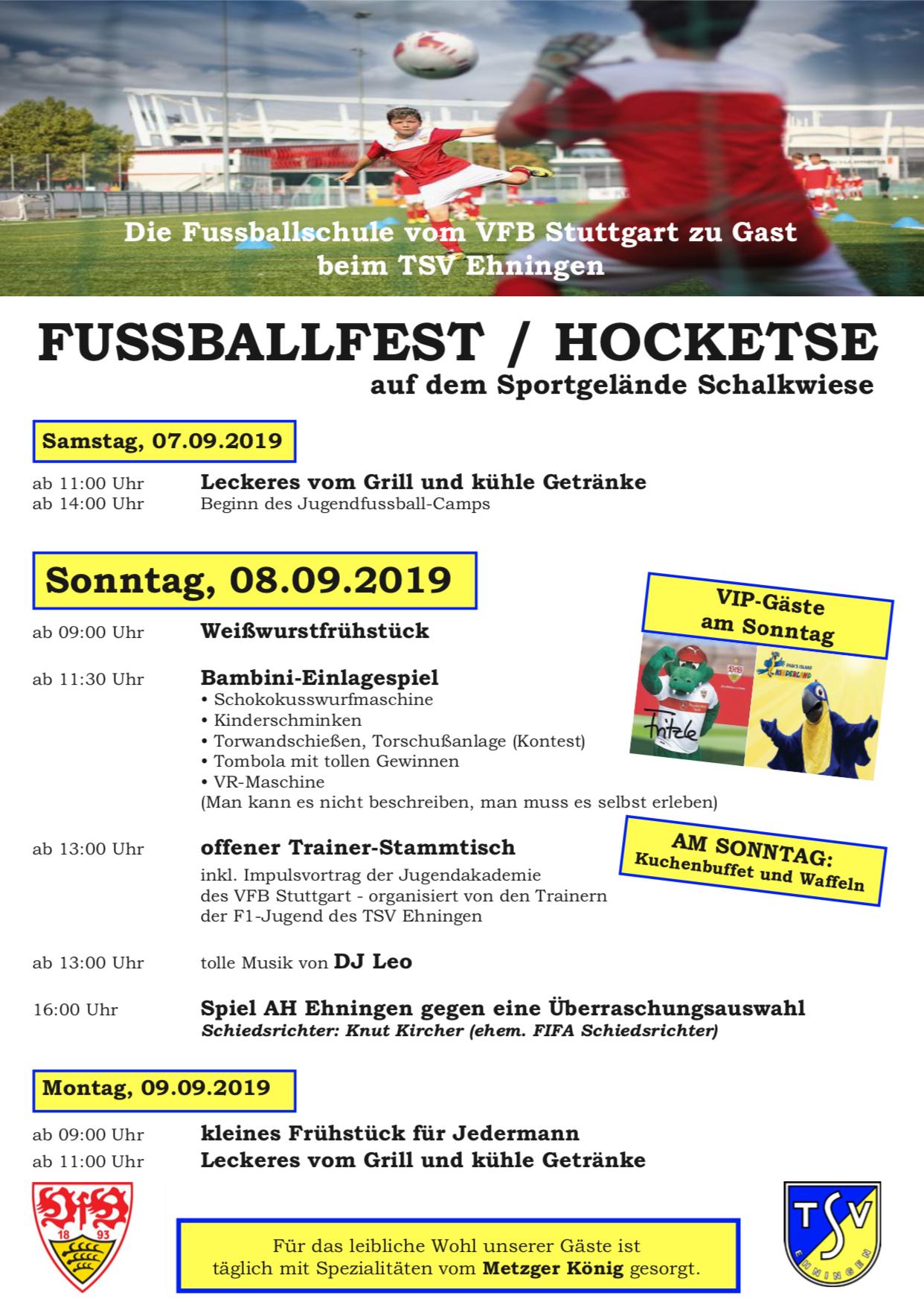 Die Fussballschule des VfB zu Gast beim TSV Ehningen